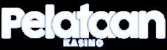 pelataan kasino logo kasinoviidakko 240x72 - Pelataan Kasino